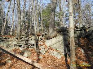 Conneticut stone line photo by Dave Cuneo