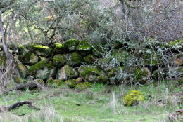 Schaffer Ranch stone line in the Sutter Buttes