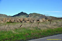Sutter Buttes Stone Lines